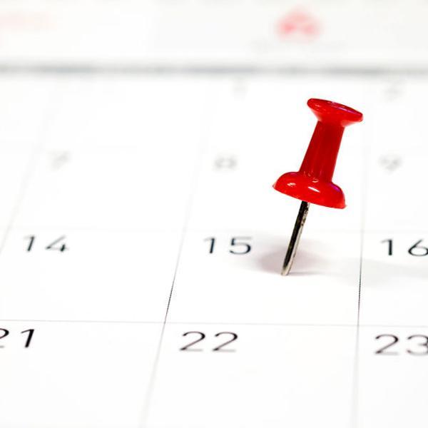Delafair - immer termingerecht (Kalender mit Pin)